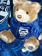 OFFICIAL-AFL-PREMIERSHIP-BEAR-2009-NEW-GEELONG-CATS-29-cm-COLLECTORS-ITEM