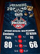 AFL-PREMIERSHIP-XL-BEACH-TOWEL-2009-NEW-GEELONG-CATS-82-CM-X-152-CM